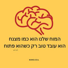 המוח.png