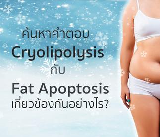 Cryolipolysis กับ Fat Apoptosis เกี่ยวข้องกันอย่างไร