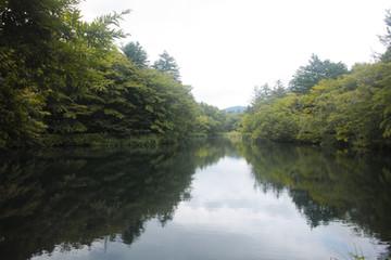 雲場の池3.jpg