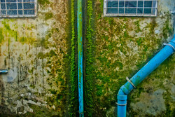 Wall with Blue Pipes and Moss, Yangon 2009