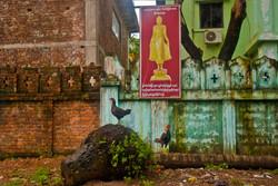 Monastery Wall, Yangon 2009