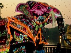 Elephant Dance, Yangon 2008