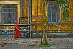 Monk Walking by City Hall, Yangon 2008