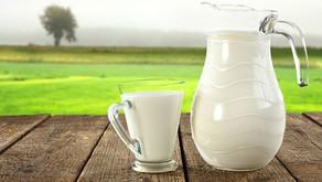 Segundo mês de alta no preço do leite pago ao produtor