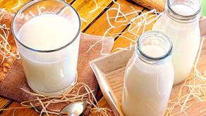 Preços dos lácteos caíram no atacado