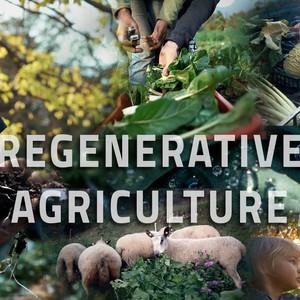 Why Regenerative Ag.
