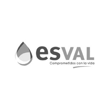 Esval_edited.jpg