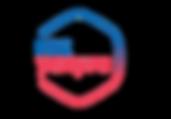 ris.-2.-emblema-gosuslug..png