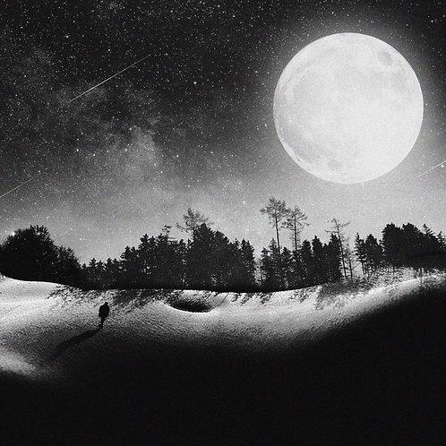Shadows - Brendan Scott Friel