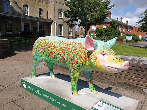 "Destination Basingstoke ""Hampshire Hog"" sculpture"