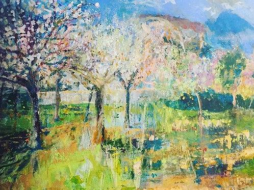 Valldemossa Almond Trees