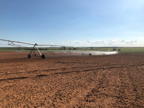 Red Dirt Turf Field Prep and Irrigation