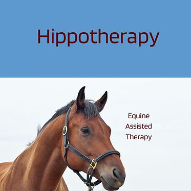 HIPPOTHERAPY