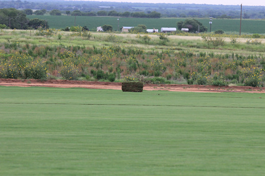 Red Dirt Turf Freshly Cut Waiting to be Delivered