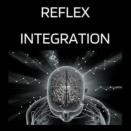 ReflexIntegration.jpg