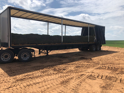 Red Dirt Turf Professional Hauling Services