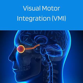 VisualMotor.jpg