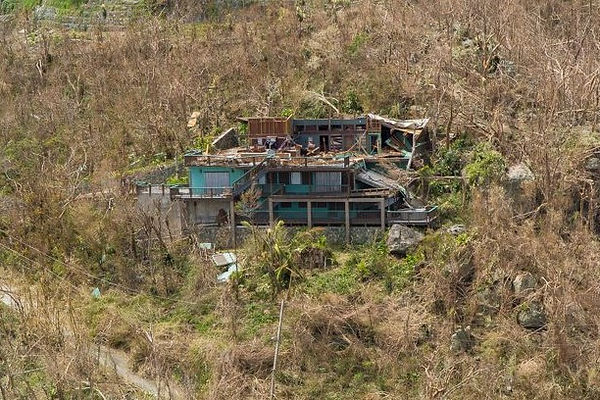 LJC post Irma cropped.jpg