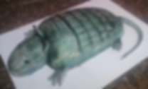 3D Armadillo Cake.png