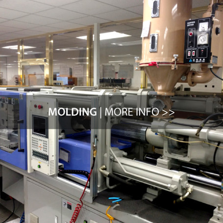 Molding