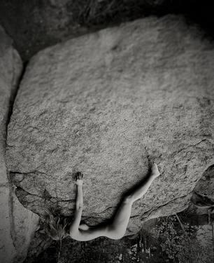 Stonedweb.jpg