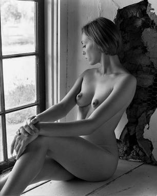 Window Web.jpg