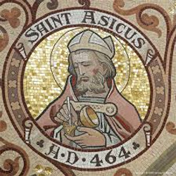 Asicus