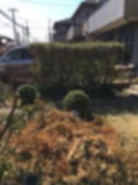 庭木の伐採・草むしり玄関前