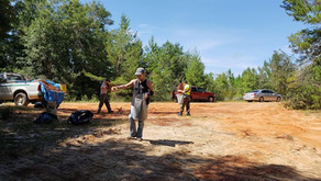 Conservation at Blackwater State Park