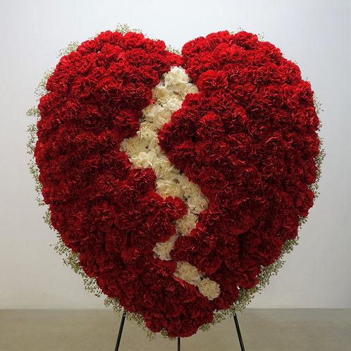 Broken Heart - Carnations
