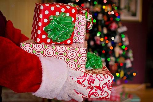 Santa Delivery Bags