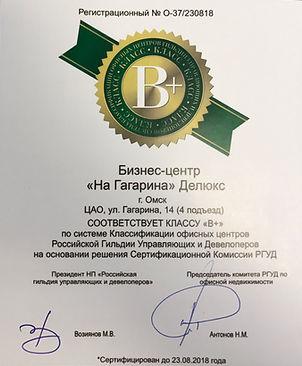 Бизнес Центр На Гагарина Делюкс Омск