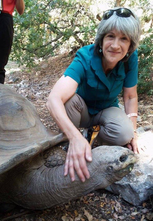 Conservation Psychology: A Conversation with Emily Routman, Zoo Educator and Owner and Principal at