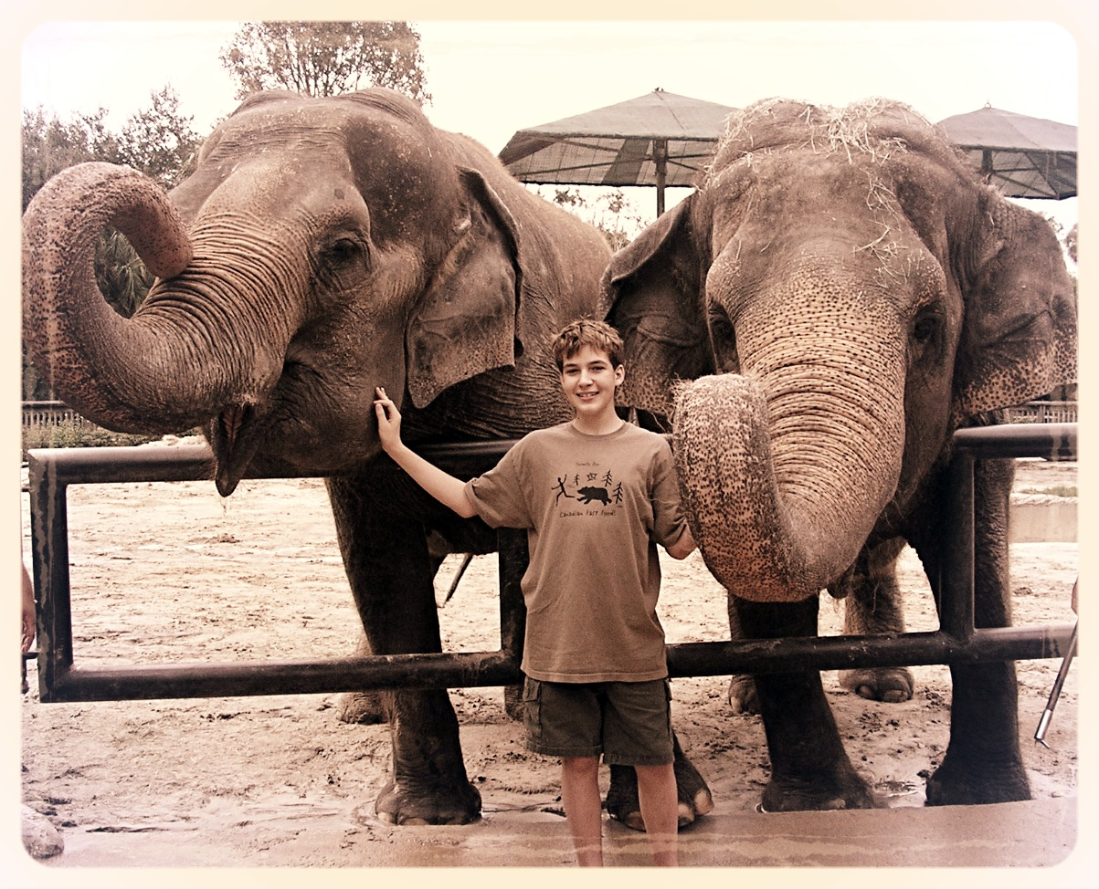 grayson elephants_edited