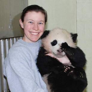 Grizzlies, Pandas and Polar Bears Oh My!: A Conversation with Courtney Janney, Curator of Large Mamm