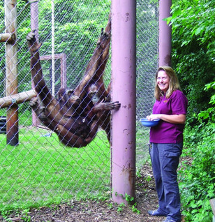 Madison's Beloved Zoo: A Conversation with Ronda Schwetz, Director of the Henry Vilas Zoo