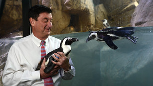 Wildlife Paradise in the Louisiana Bayou: A Conversation with Ron Forman, CEO of Audubon Nature Inst