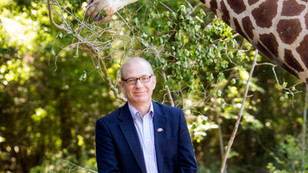 A Great City Has a Great Zoo: A Conversation with Phil Frost, Director of the Baton Rouge Zoo