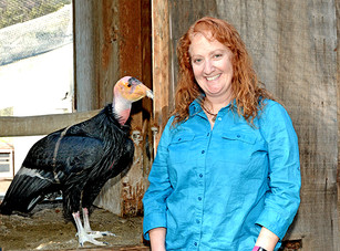 A Zoo Without Borders: A Conversation with Beth Schaefer, General Curator at the Los Angeles Zoo
