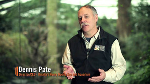 Roaming the African Grasslands: A Conversation with Dennis Pate, Director of Omaha's Henry Doorl