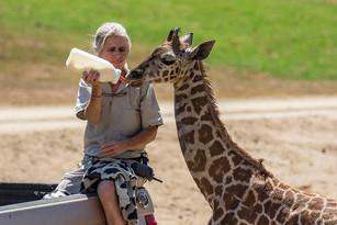 Happy National Zookeeper Week
