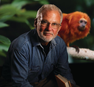 Primate Problem Solving and Reintroduction: A Conversation with Dr. Ben Beck, Retired Associate Dire