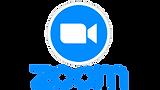 Zoom-Logo-3.png