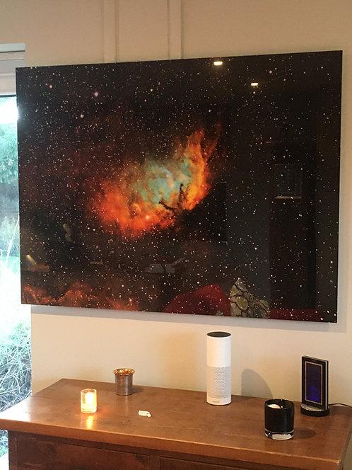 "Gallery Sale -The Tulip 48"" Frameless Acrylic"