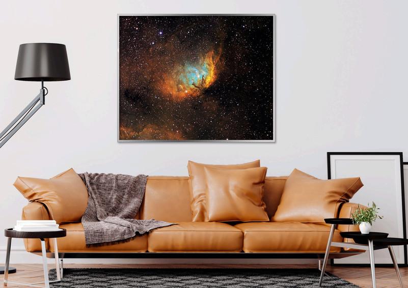 inspiration tulip framed acrylic.jpg