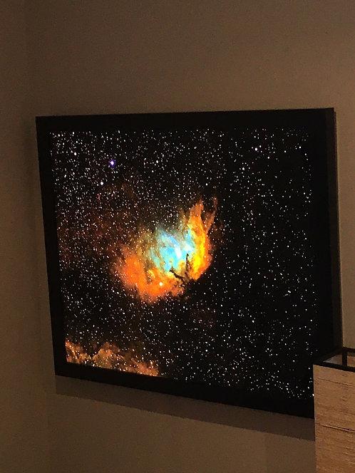 "Gallery Sale -The Tulip 32"" Backlit- Gallery sale Item"