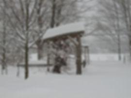Winter interest 003.jpg