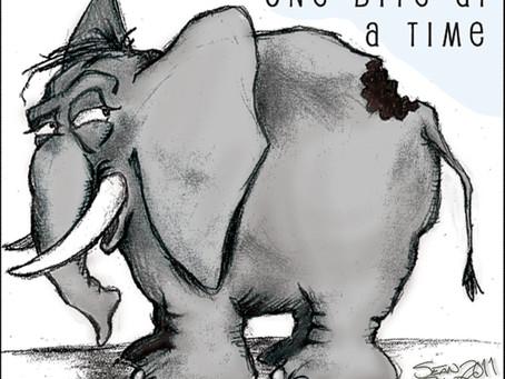 Elephant Bites