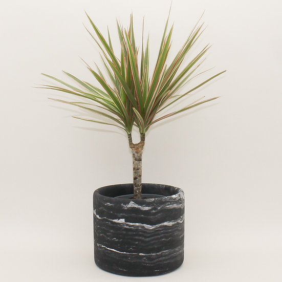 Black Marble Large Plant Pot