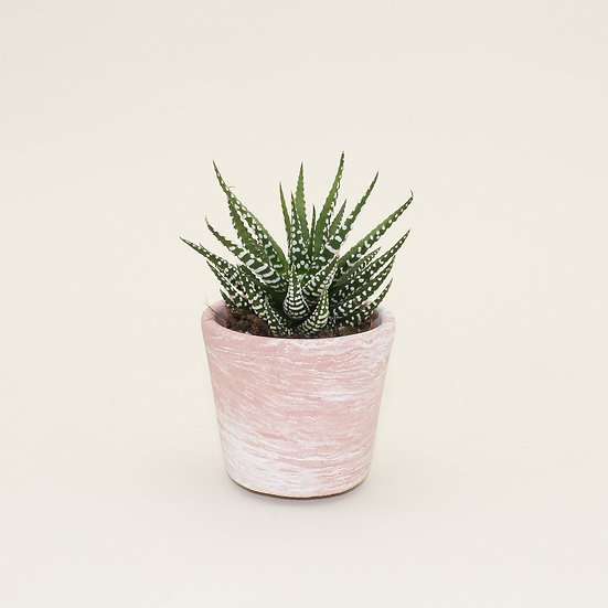 Pink Marble Small Plant Pot